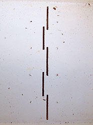 beetltra-slots